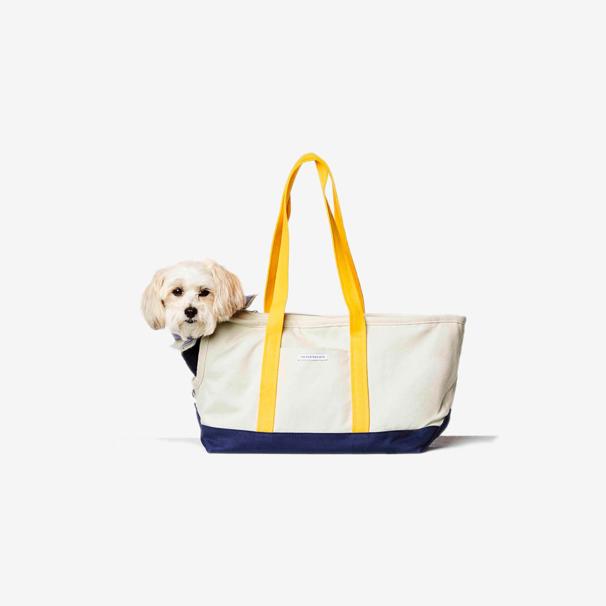 DOG CARRIER CONSTANTIN_ NAVY / YELLOW